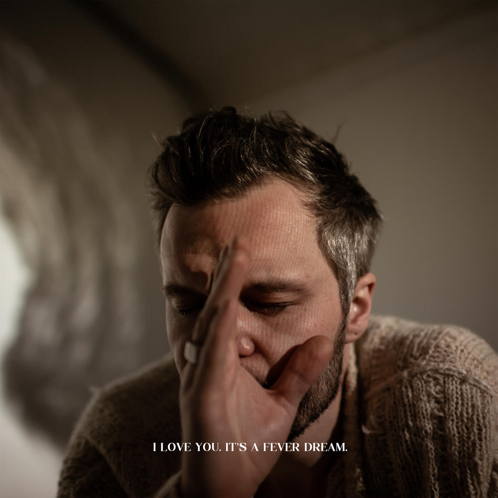 the tallest man on earth i love you its a fever dream album cover